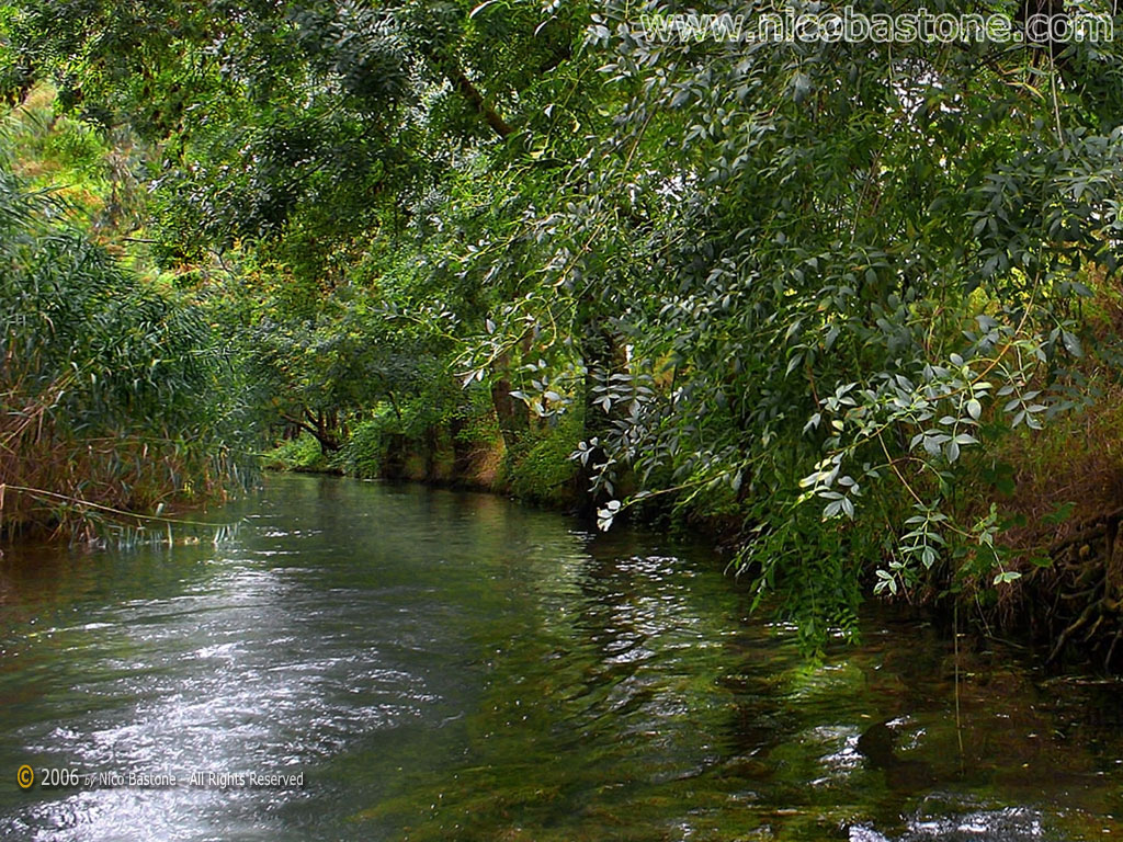 ... Siracusa: Ciane river photos - Foto fiume Ciane Sfondi per Desktop