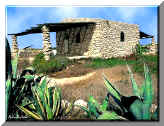 Lampedusa - AGRIGENTO House with agaves