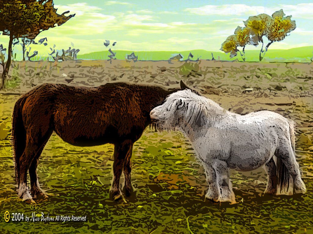 Friends - Wallpapers Sfondi per Desktop - Copyright by Nico Bastone - All Rights Reserved