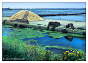 "Marsala  ""The Saline"" (Salt production) - ""Canal"""